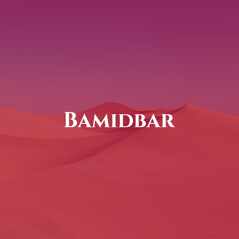 box-bamidbarred