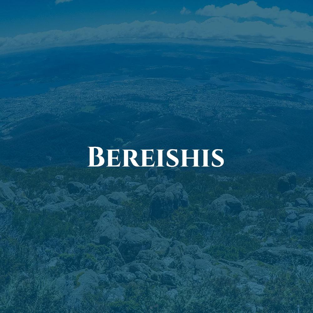 box-bereishes