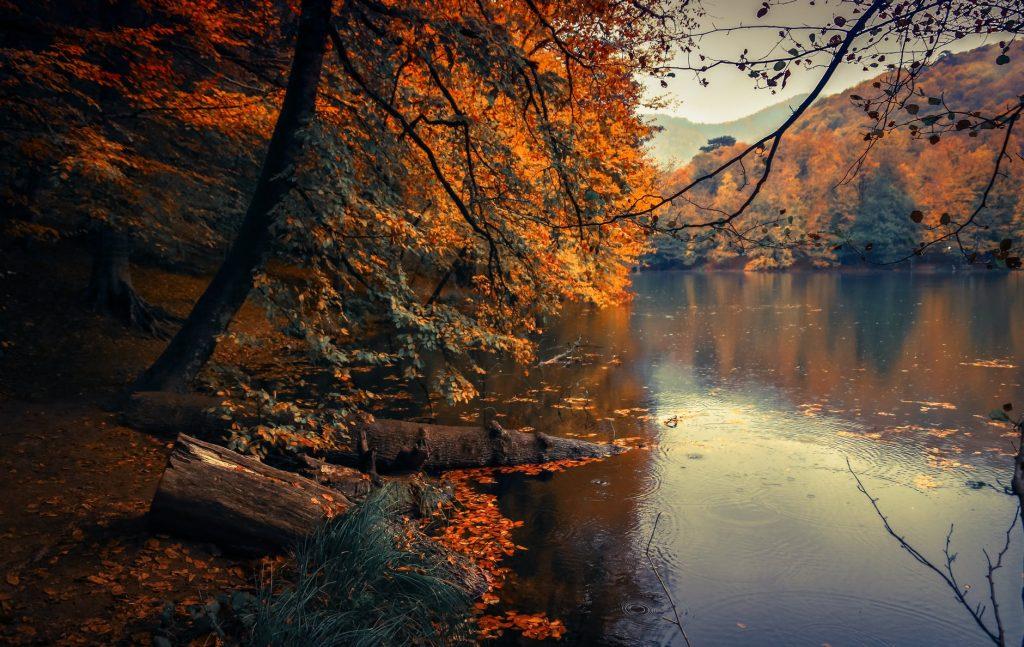 calm body of lake